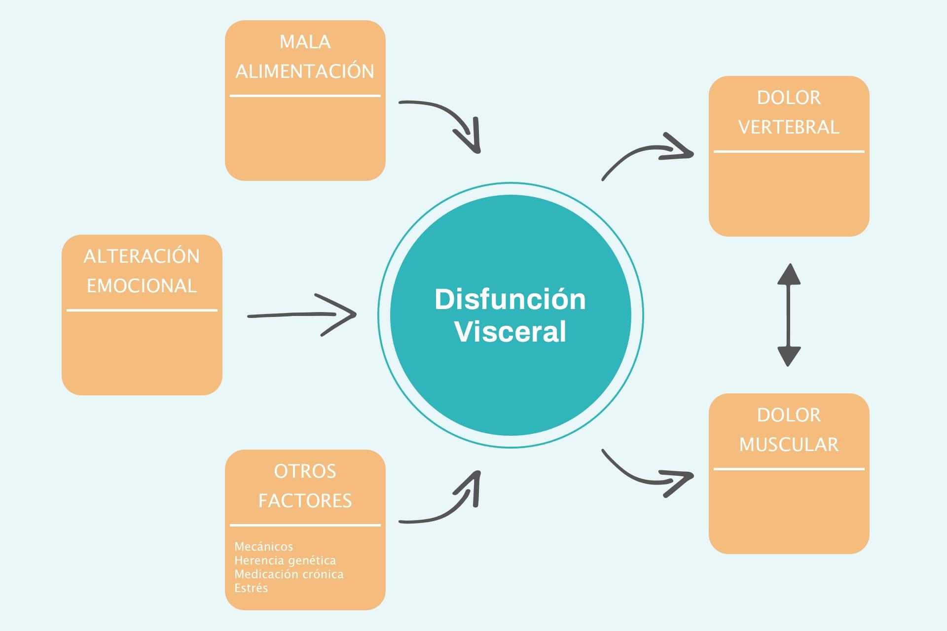 Infografía Disfunción Visceral